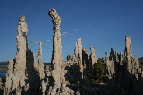 some calcium pillars of Mono Lake