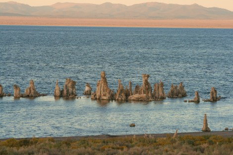 tufa grows out of Mono Lake