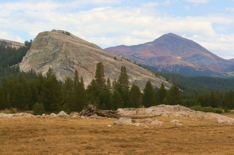 Mt. Dana- 13,053 ft. (2nd highest peak in Yosemite), towers over a dome in the Tuolumne Meadows area