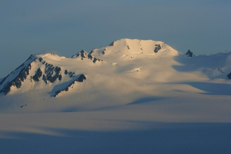 """""""the Grand Dandini"""" rises over the icefield in late evening light, as seen from camp"""