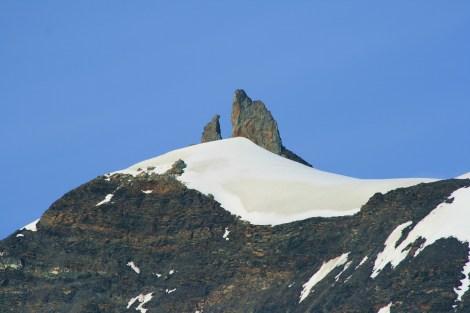 the Salmon Head- Harding Icefield
