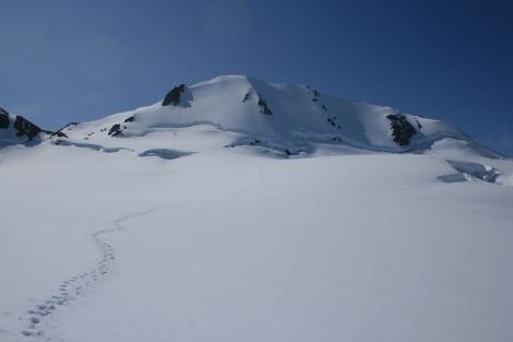 footprints across the icefield, coming down from the Dandini in distance