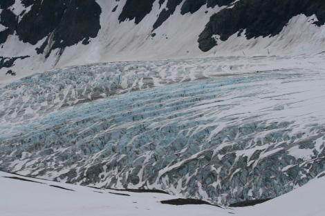 massive crevasses on Exit Glacier