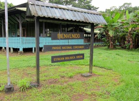 Bienvenido to Sirena camp