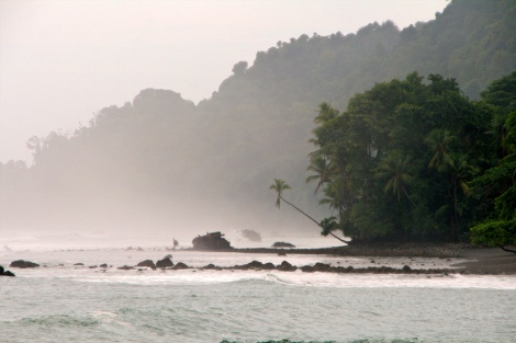 all of Corcovado's coast looks just like this...