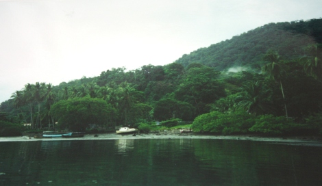 jungle coastline near Golfito