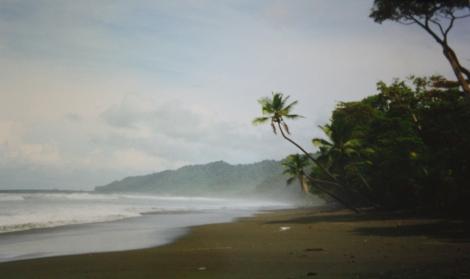 Corcovado...paradise!