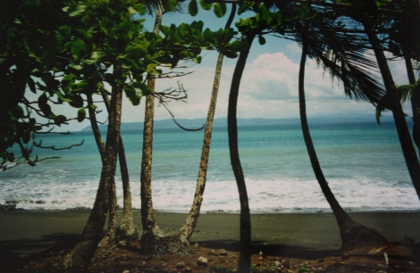 view to the beach at Pavones, from camp