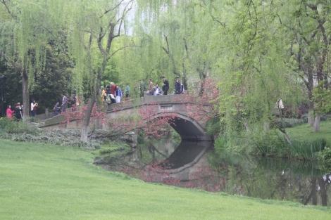 serene scene in Yongjin Park- West Lake