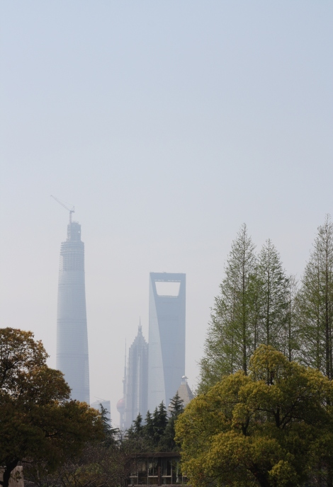 view of Pudong's giants from Tangquiao Park